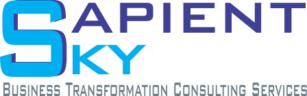 Sapient Sky - Business Transformation Consulting Services